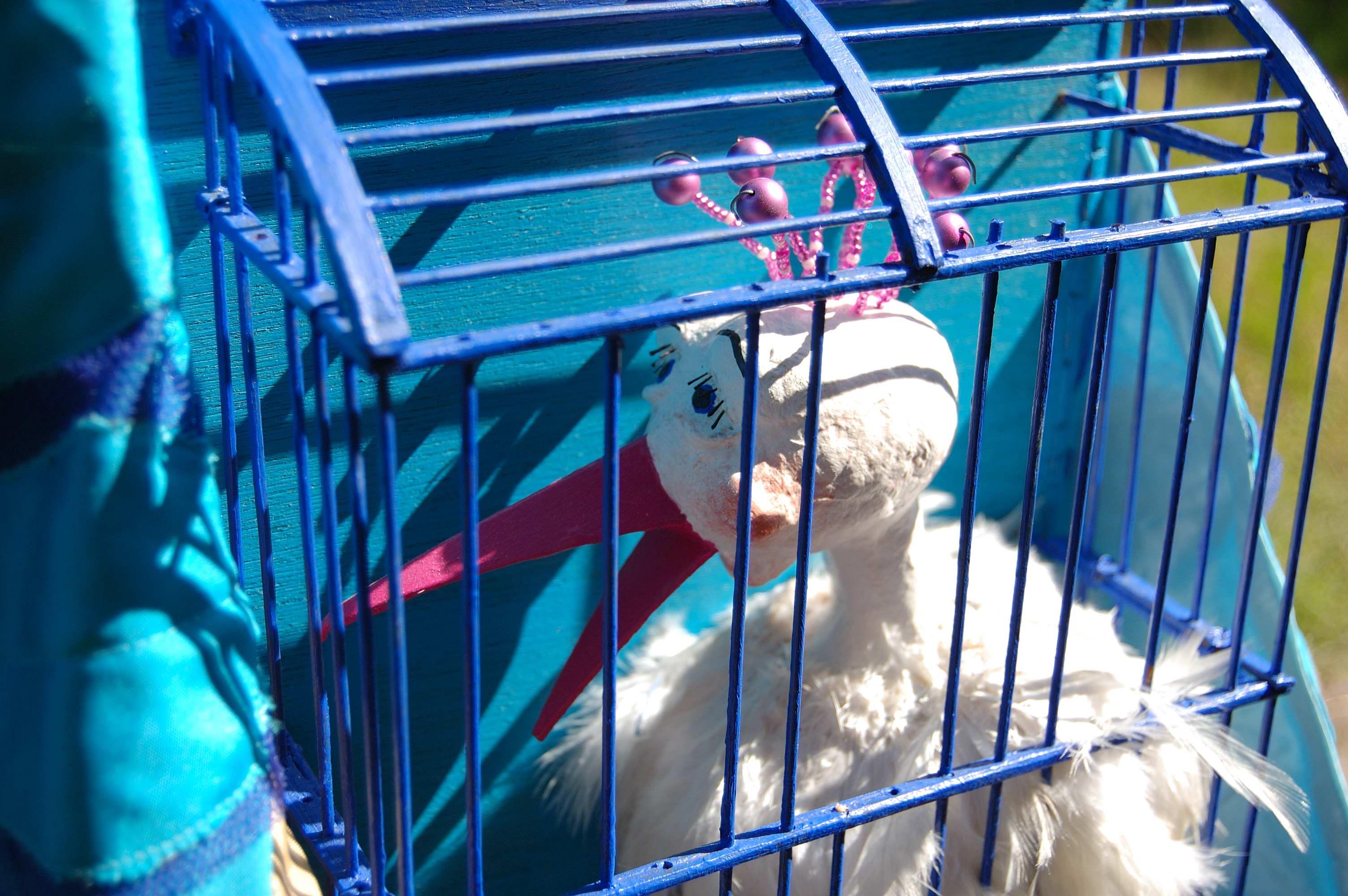 vogels in een kooi